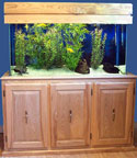 90 Galllon Aquarium Combo Plan